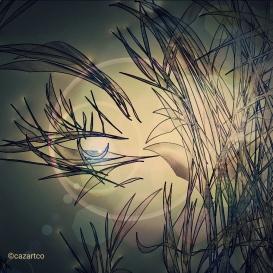 Reminisce by Cazartco
