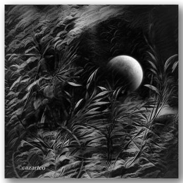 Equinox by cazartco